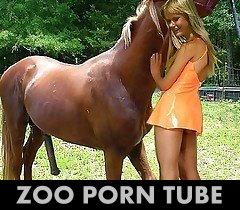 TUBE_Zoosex